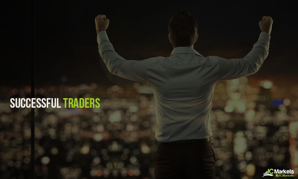 What can we learn from Successful Traders?