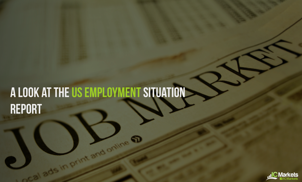 A look at the US employment situation report
